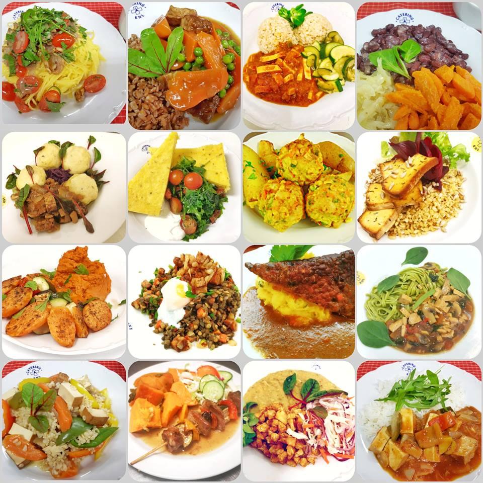 Koncepce FIT Food